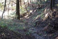 リニア実験線のトンネル掘削により水が涸れた沢(山梨県御坂町)